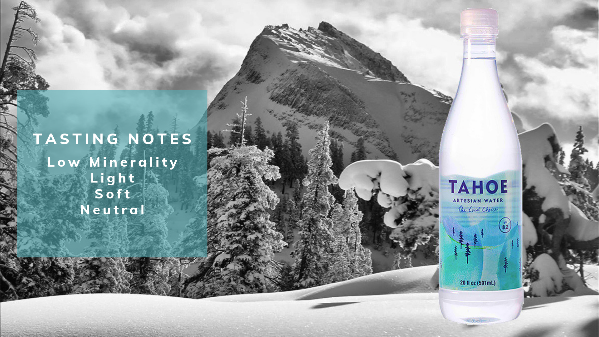 Tahoe Artesian Water Tasting Notes